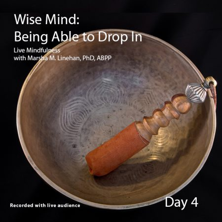 Wise Mind: Being Able to Drop In