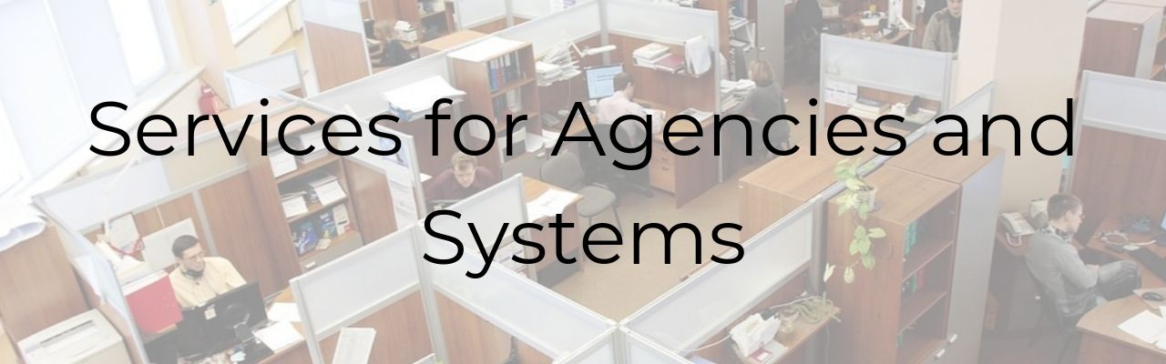 Services for Agencies and Systems