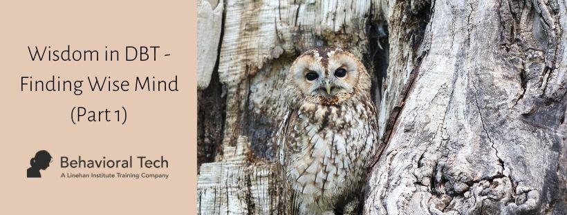 Wisdom in DBT - Finding Wise Mind part 1