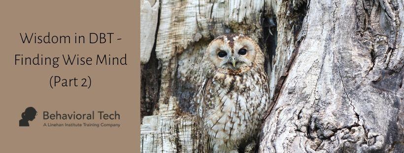 Wisdom in DBT – Finding Wise Mind (Part 2)